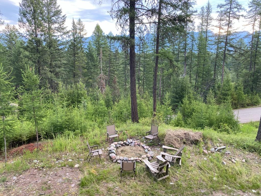 Peaceful woods near Glacier National Park