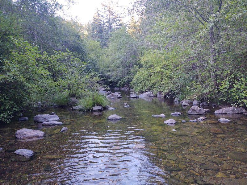 Beautiful Creek Front at fellow Vanlifers land